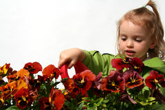 Little gardener royalty free stock photography