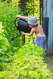 Little gardener Stock Images