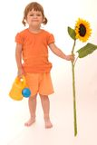 Little gardener Stock Image