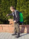 Little gardener Royalty Free Stock Images