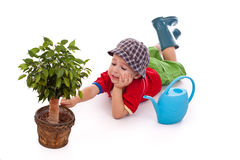 Little gardener boy Royalty Free Stock Photos