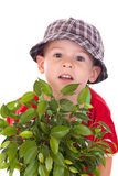 Little gardener boy Royalty Free Stock Images