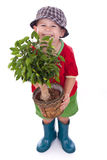 Little gardener boy Stock Image