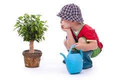 Little gardener boy Stock Photography