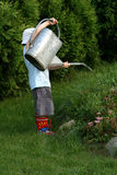 Little gardener boy Stock Photo