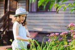 Little gardener child girl helping to trim and cut spirea bush in summer garden Stock Photography