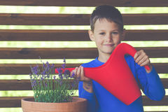 Little gardener watering flowers with red watering can royalty free stock photo