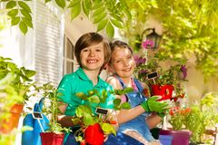 Little gardeners with potted strawberries plants royalty free stock photography