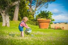 Little gardiner on green grass in a summer day Stock Photos