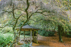 Little gazebo at National Rhododendron Gardens, Australia Royalty Free Stock Photo