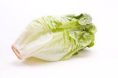 Little Gem lettuce Stock Photo