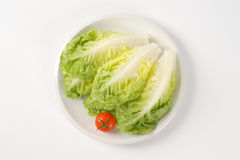 Little gem lettuce Stock Photos