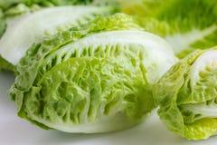 Little gem lettuce on white Royalty Free Stock Image