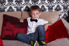 Little gentelman Stock Images