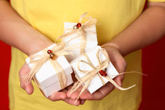 Little gifts Royalty Free Stock Image
