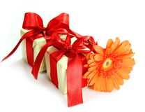 Little Gifts and Flower Stock Photography