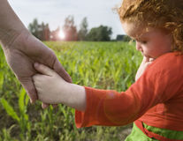 Little gilr holding hand royalty free stock photography