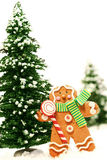 Little gingerbread man Stock Images