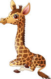 Little giraffe calf sitting. Illustration of Little giraffe calf sitting Stock Photo