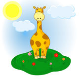 Little giraffe on the meadow Royalty Free Stock Images