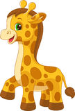 Little giraffe toy Stock Photography