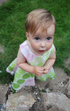 Little girl. Look upwards with interest royalty free stock image
