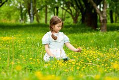 Little girl. Stock Photography