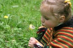 Little girl. Smiley little girl blow to dandelion on grass Royalty Free Stock Photo