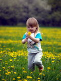 Little girl. In the flowering field Royalty Free Stock Images