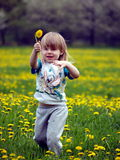 Little girl. In the flowering field Stock Photos