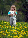 LITTLE GIRL. In the flowering field Stock Photo