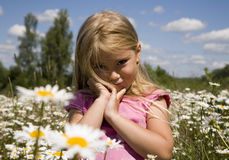 Little girl 9. Portrait of a little girl in camomile field Stock Photo