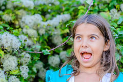 Little girl acting surprised. Little girl is standing in front of the bush stock image