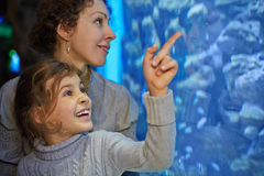 Little girl admiringly shows her mother something in aquarium. Little girl admiringly shows her mother something in big aquarium at oceanarium, focus on girl royalty free stock photos