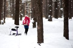 Little girl alone in the winter forest royalty free stock image