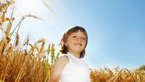 Little Girl And A Field - Agriculture Stock Image