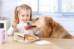 Little Girl And Dog Having Lunch Together Royalty Free Stock Images