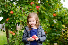 Little girl with an apple by an apple tree Royalty Free Stock Photography