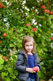 Little girl with an apple by on autumn day Stock Images
