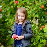 Little girl with an apple by on autumn day Royalty Free Stock Photos