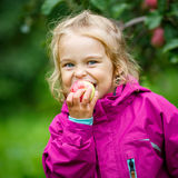 Little girl in the apple garden Stock Photo