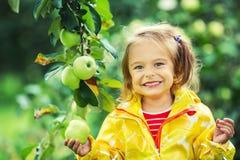 Little girl in the apple garden Stock Image