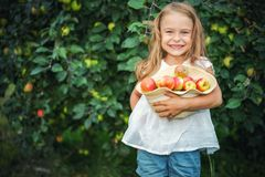 Little girl in the apple garden Royalty Free Stock Images
