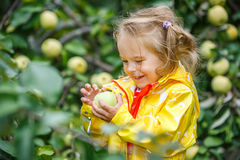 Little girl in the apple garden Stock Images
