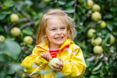 Little girl in the apple garden Stock Image
