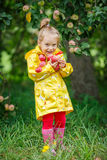 Little girl in the apple garden Royalty Free Stock Photos