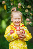 Little girl in the apple garden Royalty Free Stock Photo