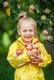 Little girl in the apple garden Royalty Free Stock Photo