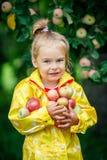 Little girl in the apple garden Royalty Free Stock Image