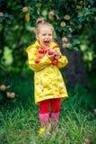 Little girl in the apple garden Stock Images